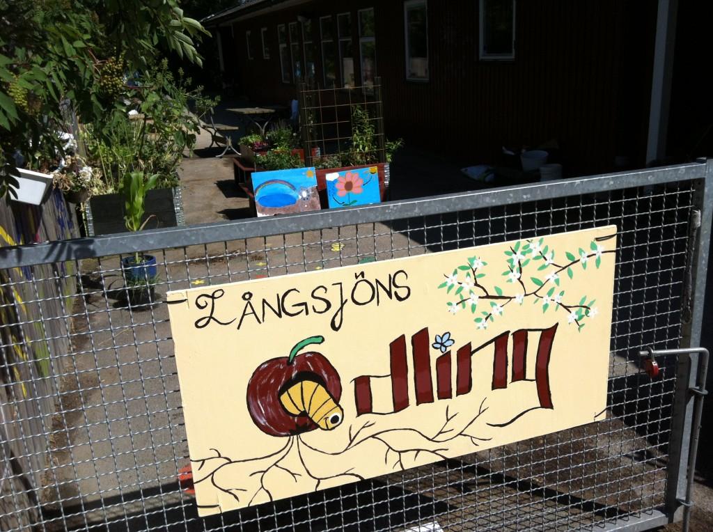 Här odlas det på Långsjöns förskola